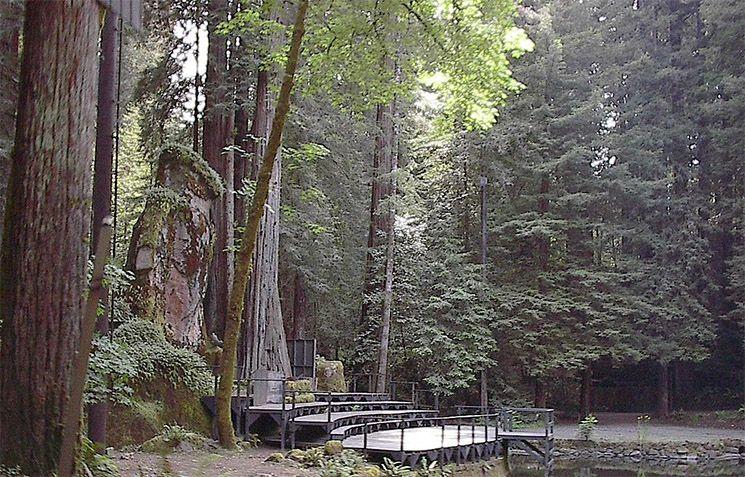 Bohemian Grove - Sagenumwobenes Treffen der Elite im Waldgebiet